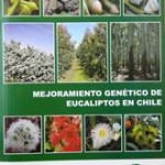 Libro Mejoramiento genético de eucalipto